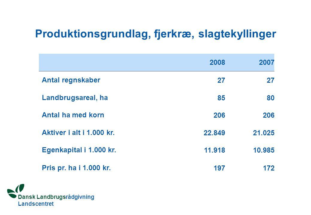 Dansk Landbrugsrådgivning Landscentret Produktionsgrundlag, fjerkræ, slagtekyllinger 20082007 Antal regnskaber 27 Landbrugsareal, ha 8580 Antal ha med korn 206 Aktiver i alt i 1.000 kr.