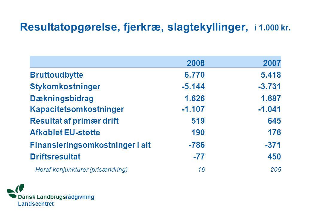 Dansk Landbrugsrådgivning Landscentret Resultatopgørelse, fjerkræ, slagtekyllinger, i 1.000 kr.