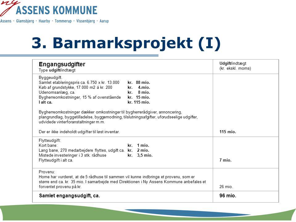 3. Barmarksprojekt (I) Engangsudgifter Type udgift/indtægt Udgift/indtægt (kr.