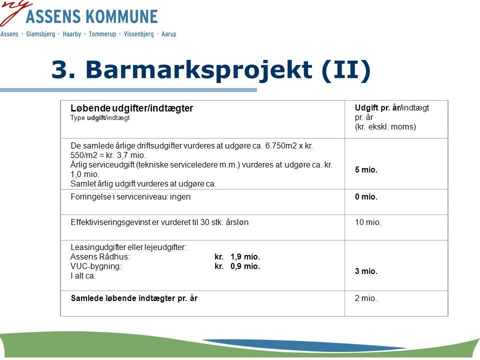 3. Barmarksprojekt (II) Løbende udgifter/indtægter Type udgift/indtægt Udgift pr.