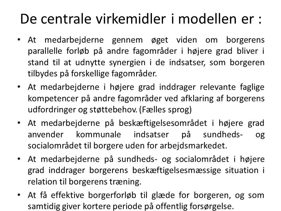 De centrale virkemidler i modellen er : At medarbejderne gennem øget viden om borgerens parallelle forløb på andre fagområder i højere grad bliver i stand til at udnytte synergien i de indsatser, som borgeren tilbydes på forskellige fagområder.
