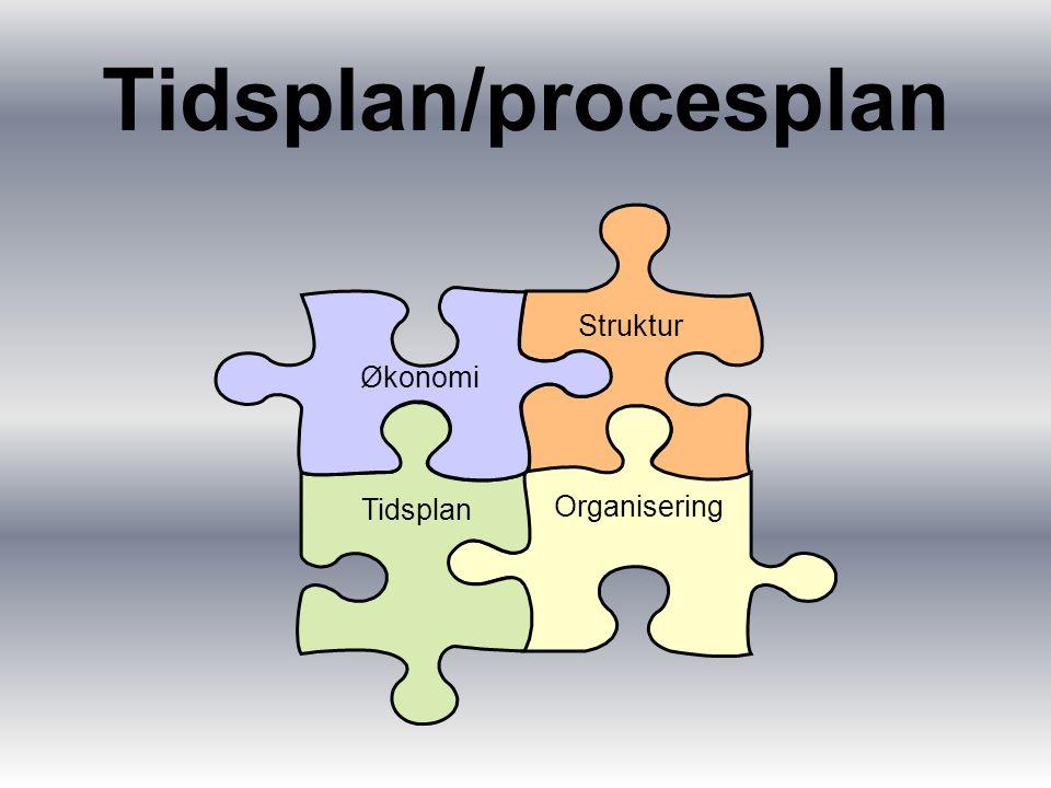 Tidsplan/procesplan Struktur Organisering Tidsplan Økonomi