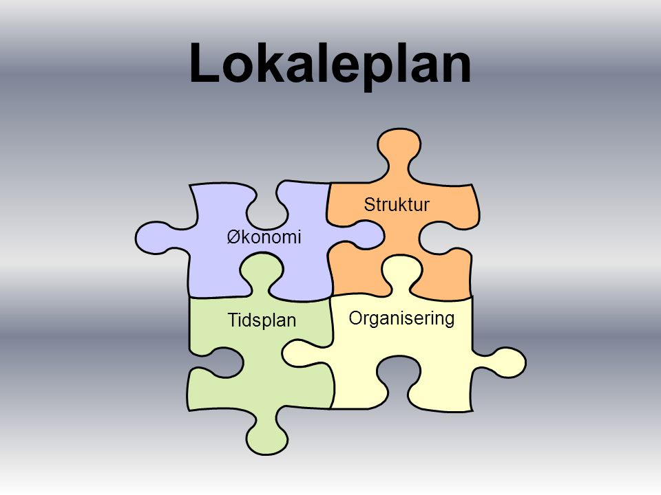 Lokaleplan Struktur Organisering Tidsplan Økonomi