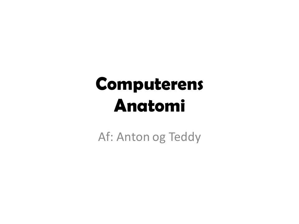 Computerens Anatomi Af: Anton og Teddy