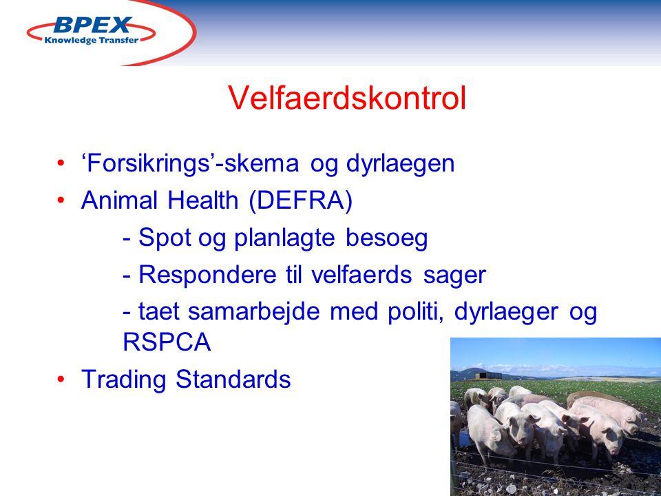 Velfaerdskontrol 'Forsikrings'-skema og dyrlaegen Animal Health (DEFRA) - Spot og planlagte besoeg - Respondere til velfaerds sager - taet samarbejde med politi, dyrlaeger og RSPCA Trading Standards