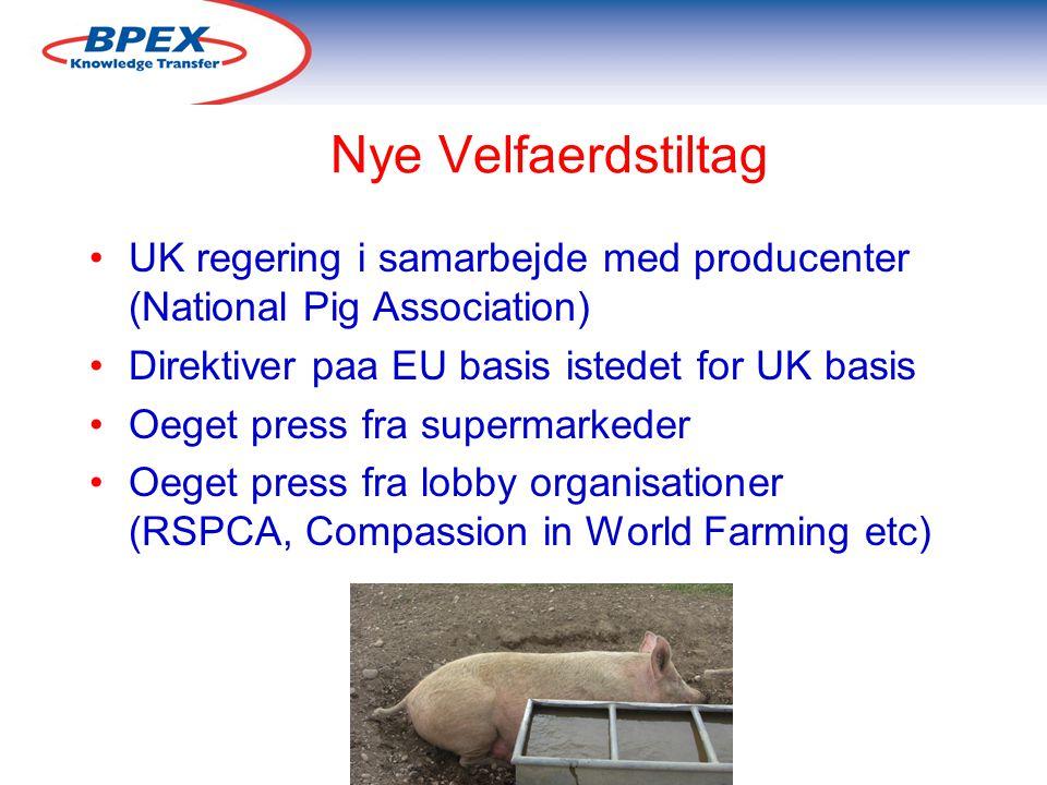 Nye Velfaerdstiltag UK regering i samarbejde med producenter (National Pig Association) Direktiver paa EU basis istedet for UK basis Oeget press fra supermarkeder Oeget press fra lobby organisationer (RSPCA, Compassion in World Farming etc)