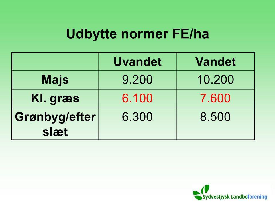 Udbytte normer FE/ha UvandetVandet Majs9.20010.200 Kl. græs6.1007.600 Grønbyg/efter slæt 6.3008.500