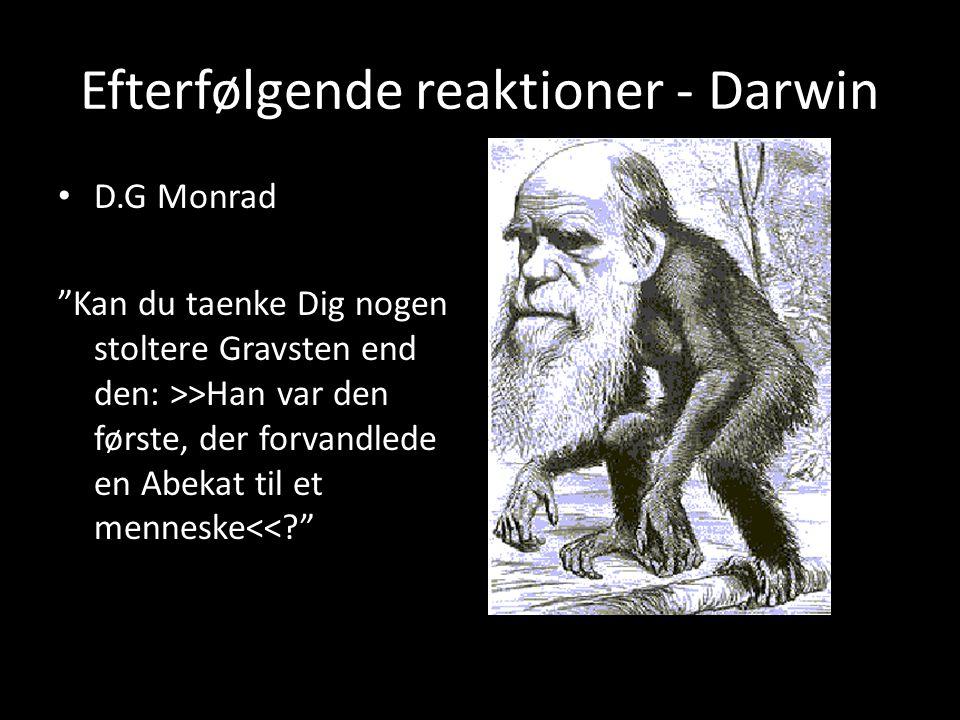 Efterfølgende reaktioner - Darwin D.G Monrad Kan du taenke Dig nogen stoltere Gravsten end den: >>Han var den første, der forvandlede en Abekat til et menneske<< d