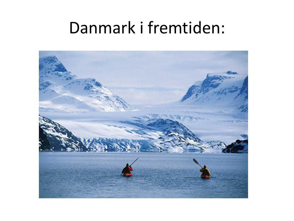 Danmark i fremtiden: