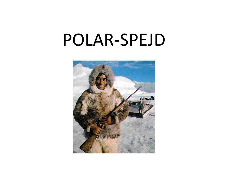 POLAR-SPEJD
