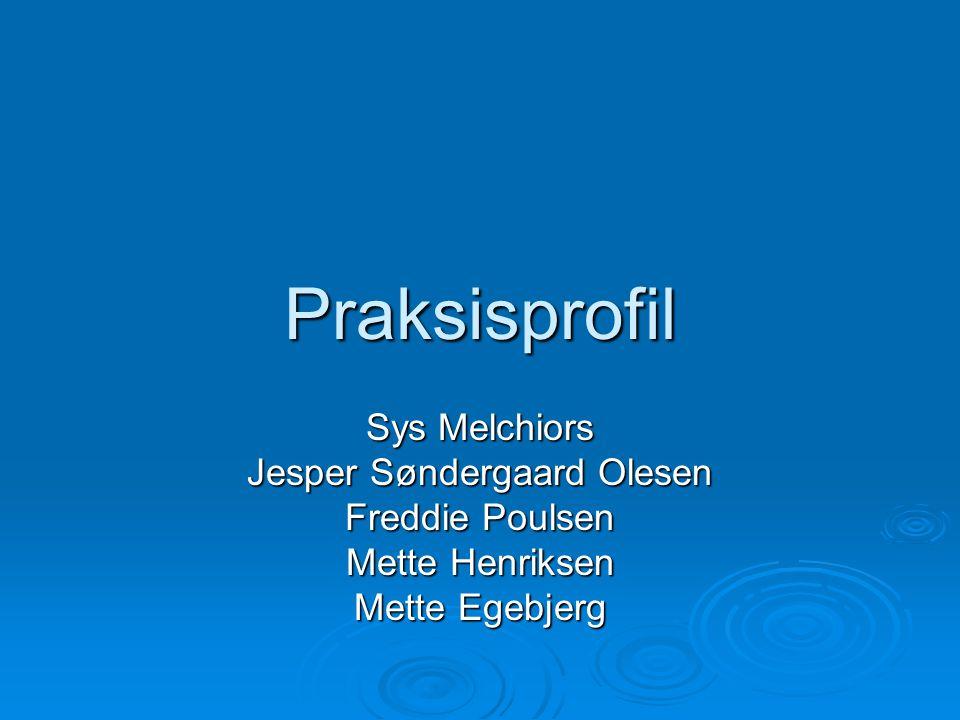 Praksisprofil Sys Melchiors Jesper Søndergaard Olesen Freddie Poulsen Mette Henriksen Mette Egebjerg