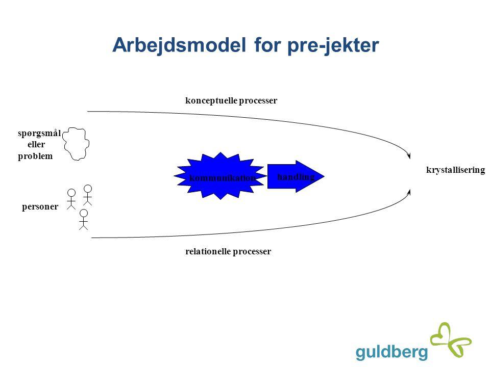 krystallisering spørgsmål eller problem personer relationelle processer konceptuelle processer kommunikation handling Arbejdsmodel for pre-jekter