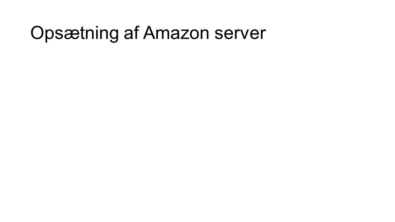 Opsætning af Amazon server