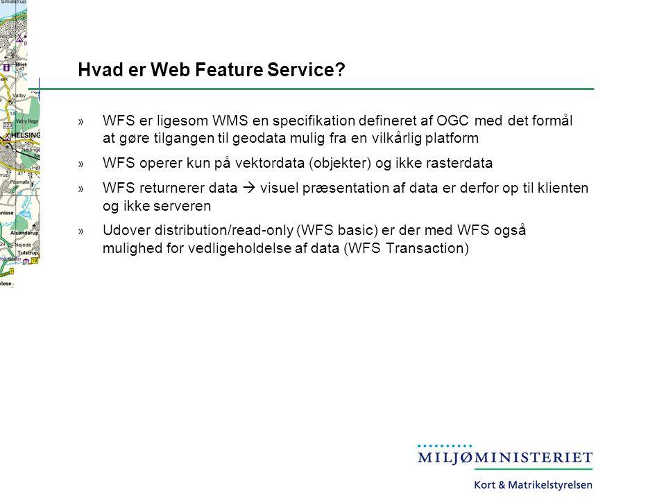 Hvad er Web Feature Service.