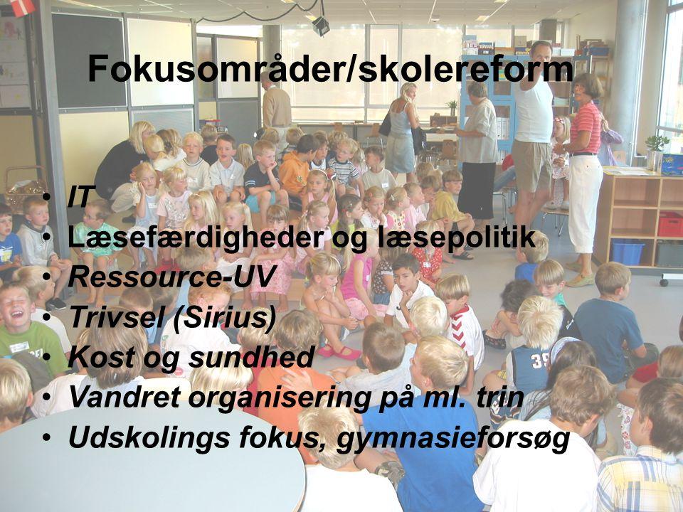 IT Læsefærdigheder og læsepolitik Ressource-UV Trivsel (Sirius) Kost og sundhed Vandret organisering på ml.