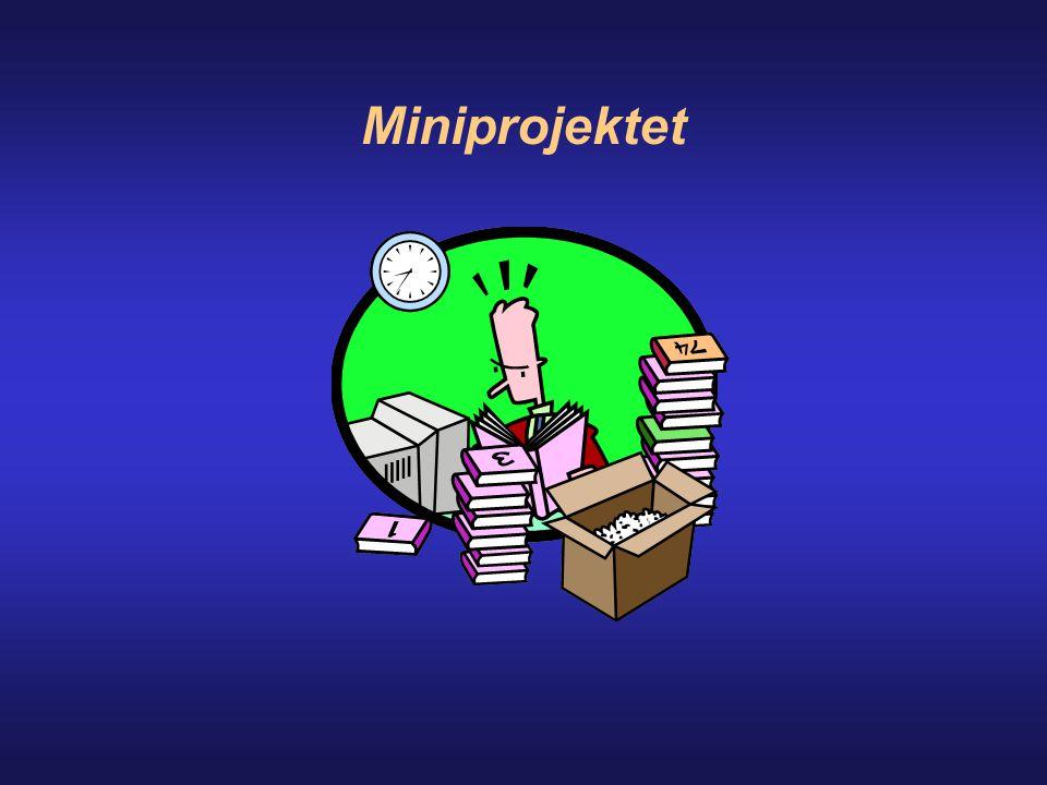 Miniprojektet