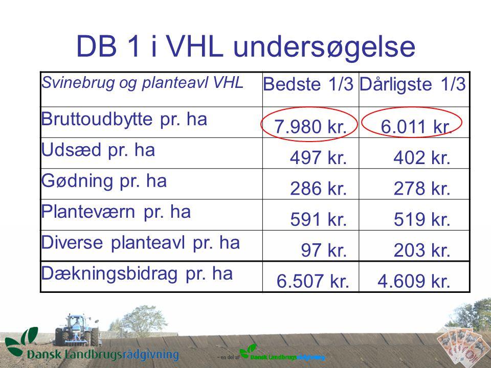 DB 1 i VHL undersøgelse Svinebrug og planteavl VHL Bedste 1/3Dårligste 1/3 Bruttoudbytte pr.