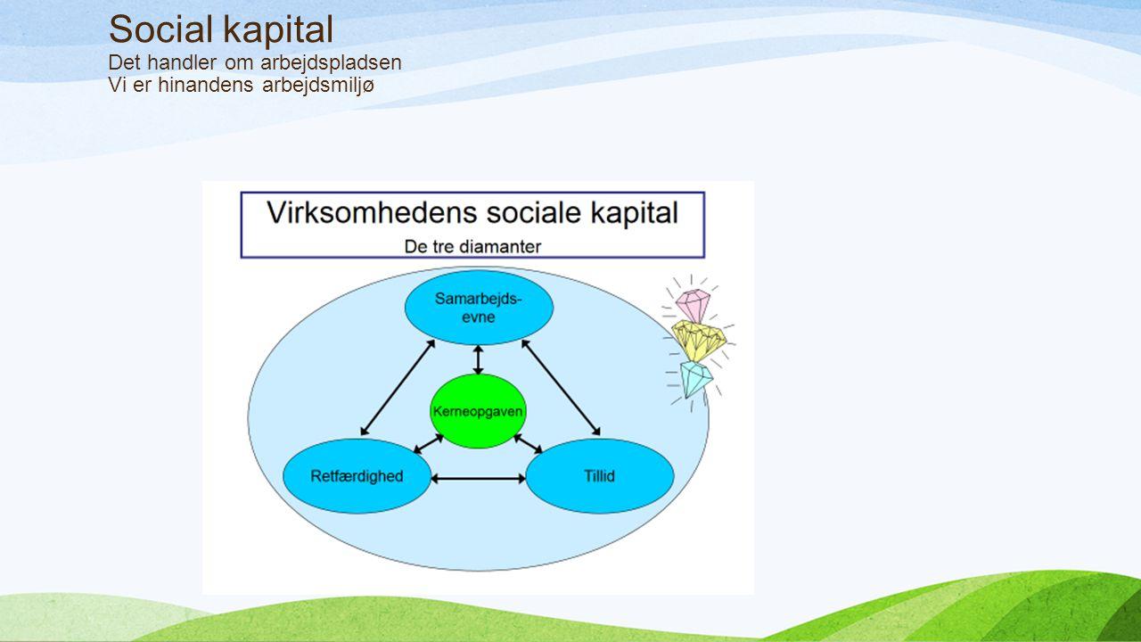 Social kapital Det handler om arbejdspladsen Vi er hinandens arbejdsmiljø