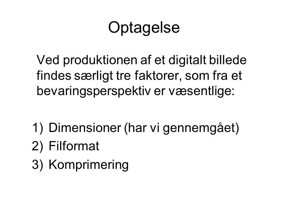 Optagelse Ved produktionen af et digitalt billede findes særligt tre faktorer, som fra et bevaringsperspektiv er væsentlige: 1)Dimensioner (har vi gennemgået) 2)Filformat 3)Komprimering