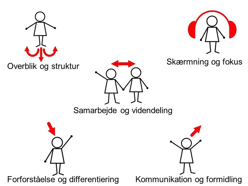 Overblik og struktur Skærmning og fokus Kommunikation og formidlingForforståelse og differentiering Samarbejde og videndeling