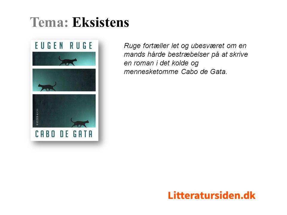 Ruge fortæller let og ubesværet om en mands hårde bestræbelser på at skrive en roman i det kolde og mennesketomme Cabo de Gata.