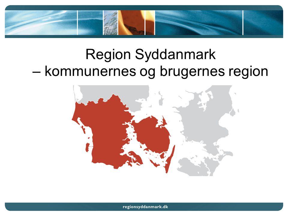 Region Syddanmark – kommunernes og brugernes region