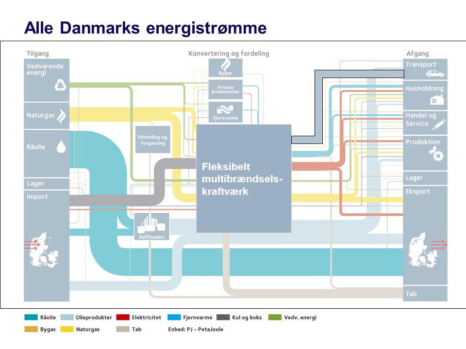 Side 14 Alle Danmarks energistrømme Fleksibelt multibrændsels- kraftværk