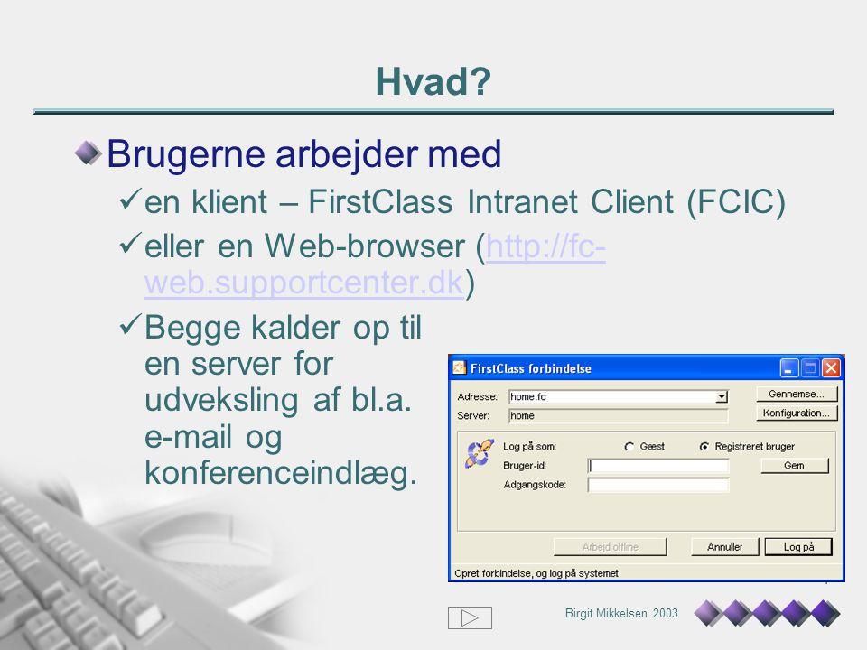 Birgit Mikkelsen 2003 4 Hvad.