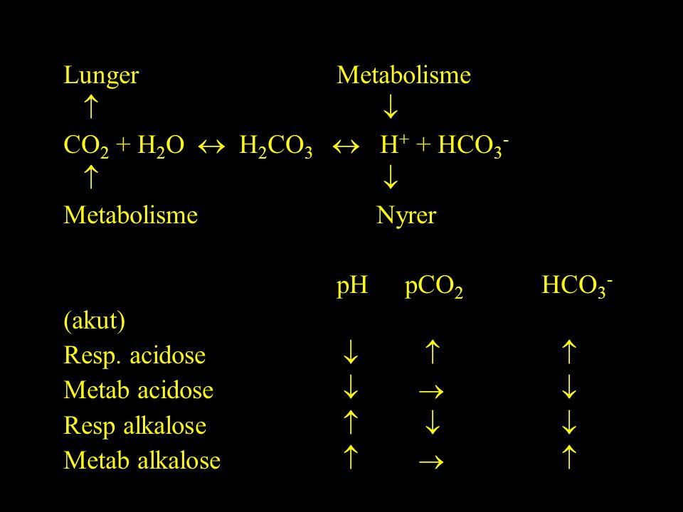 LungerMetabolisme   CO 2 + H 2 O  H 2 CO 3  H + + HCO 3 -   Metabolisme Nyrer pHpCO 2 HCO 3 - (akut) Resp.