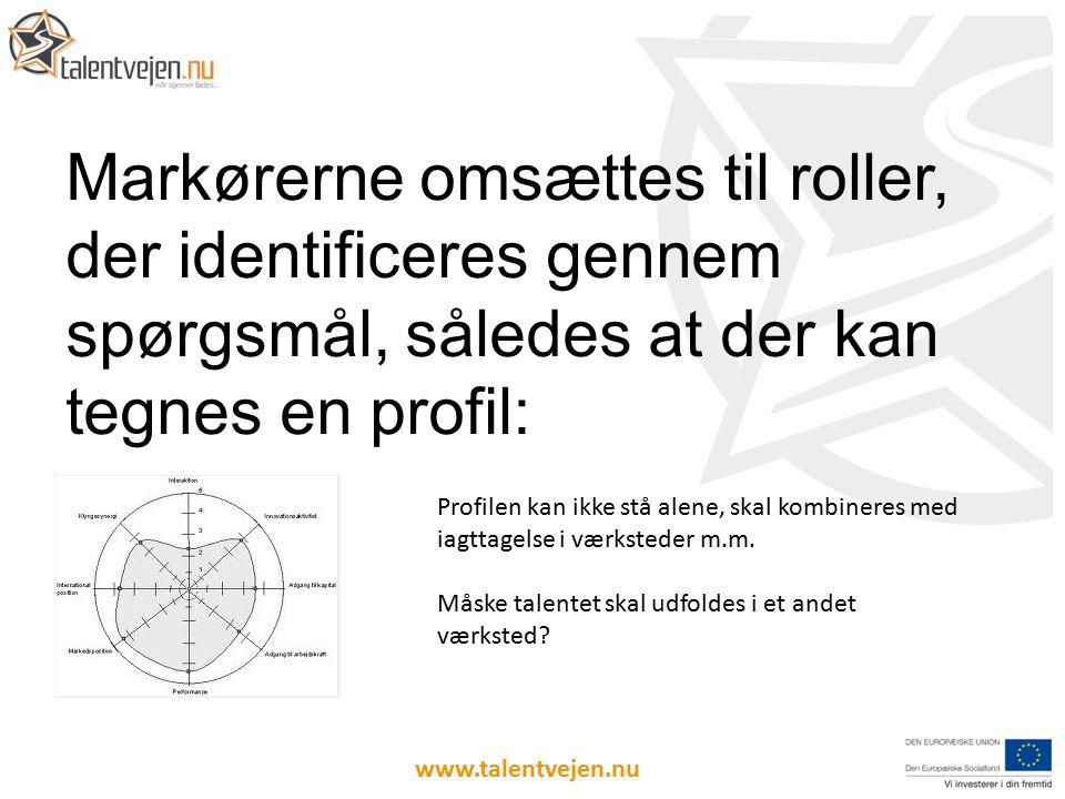 Markørerne omsættes til roller, der identificeres gennem spørgsmål, således at der kan tegnes en profil: www.talentvejen.nu Profilen kan ikke stå alene, skal kombineres med iagttagelse i værksteder m.m.