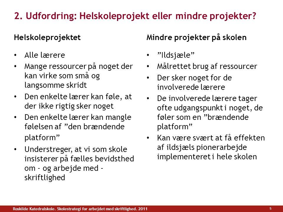 2. Udfordring: Helskoleprojekt eller mindre projekter.
