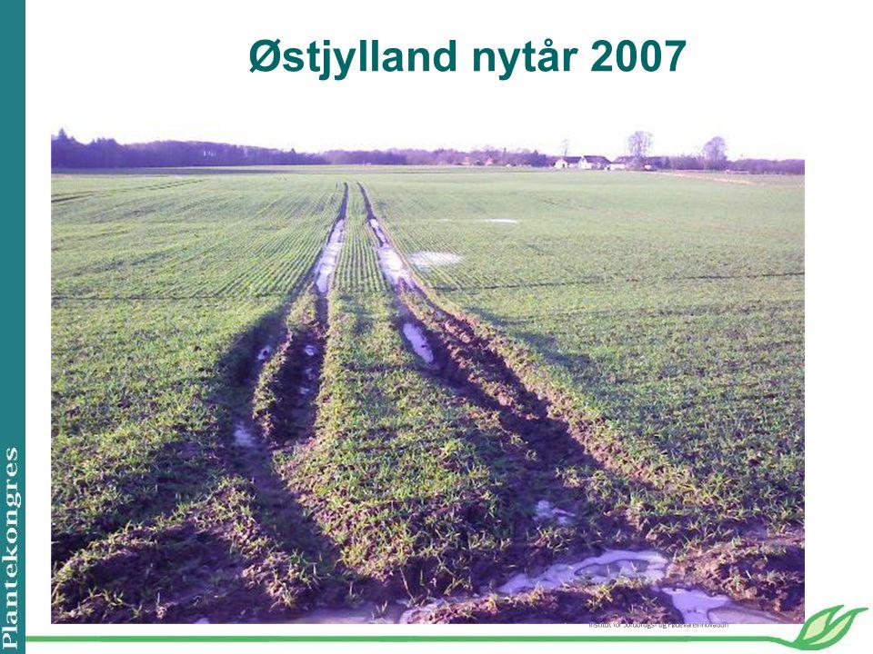 Østjylland nytår 2007
