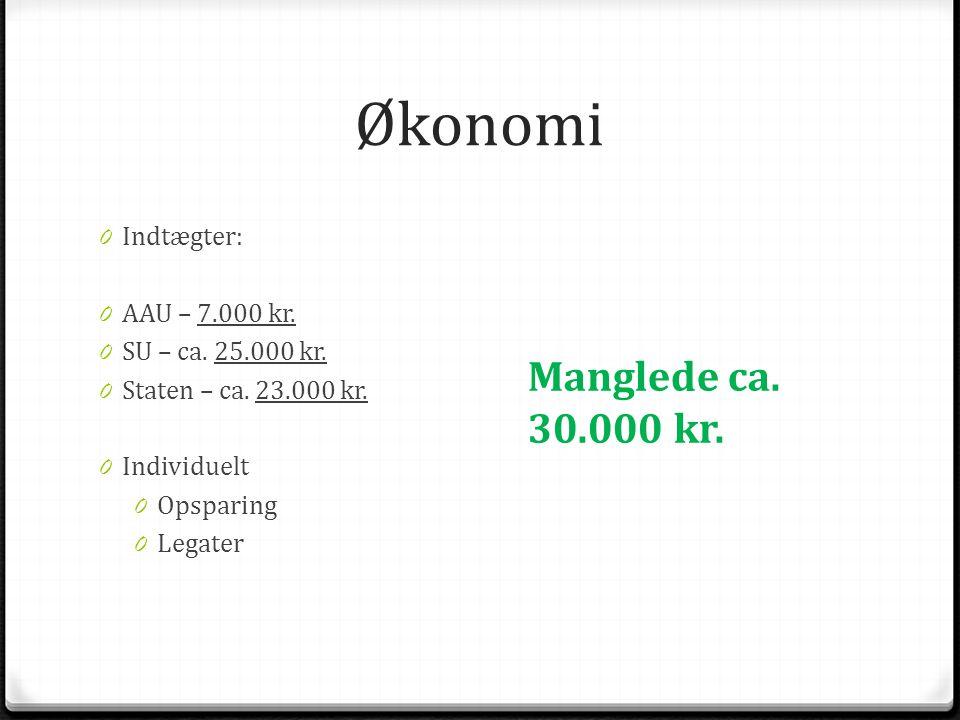 Økonomi 0 Indtægter: 0 AAU – 7.000 kr. 0 SU – ca.