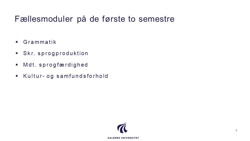 Grammatik Skr. sprogproduktion Mdt.