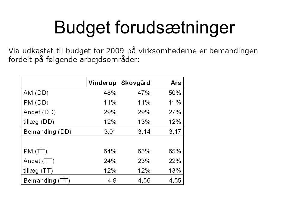 Budget forudsætninger Via udkastet til budget for 2009 på virksomhederne er bemandingen fordelt på følgende arbejdsområder: