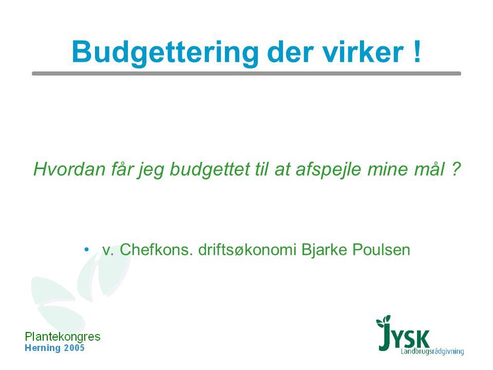 Budgettering der virker . Hvordan får jeg budgettet til at afspejle mine mål .