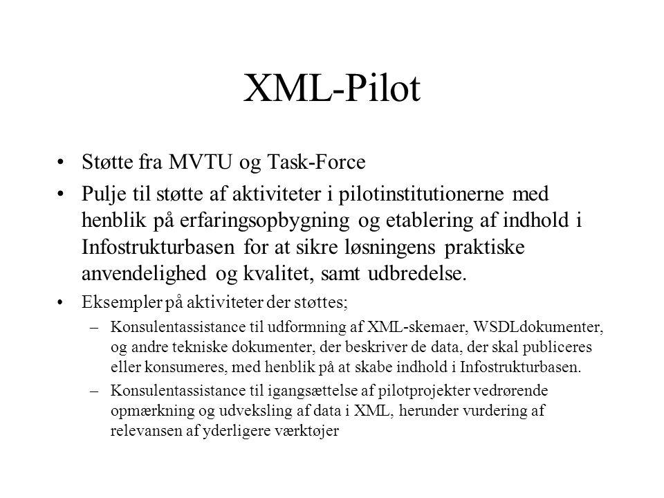 XML-Pilot Støtte fra MVTU og Task-Force Pulje til støtte af aktiviteter i pilotinstitutionerne med henblik på erfaringsopbygning og etablering af indhold i Infostrukturbasen for at sikre løsningens praktiske anvendelighed og kvalitet, samt udbredelse.