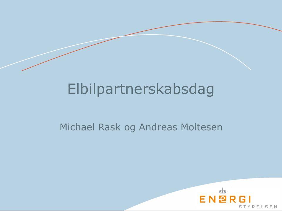 Elbilpartnerskabsdag Michael Rask og Andreas Moltesen
