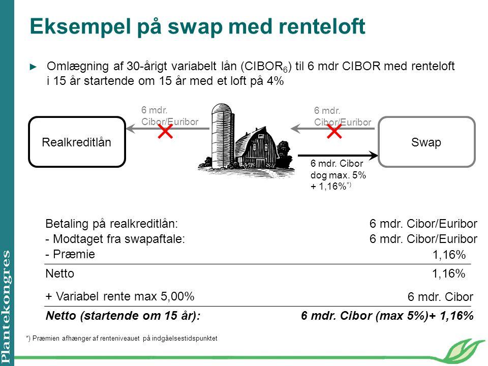 Eksempel på swap med renteloft 6 mdr. Cibor/Euribor 6 mdr.