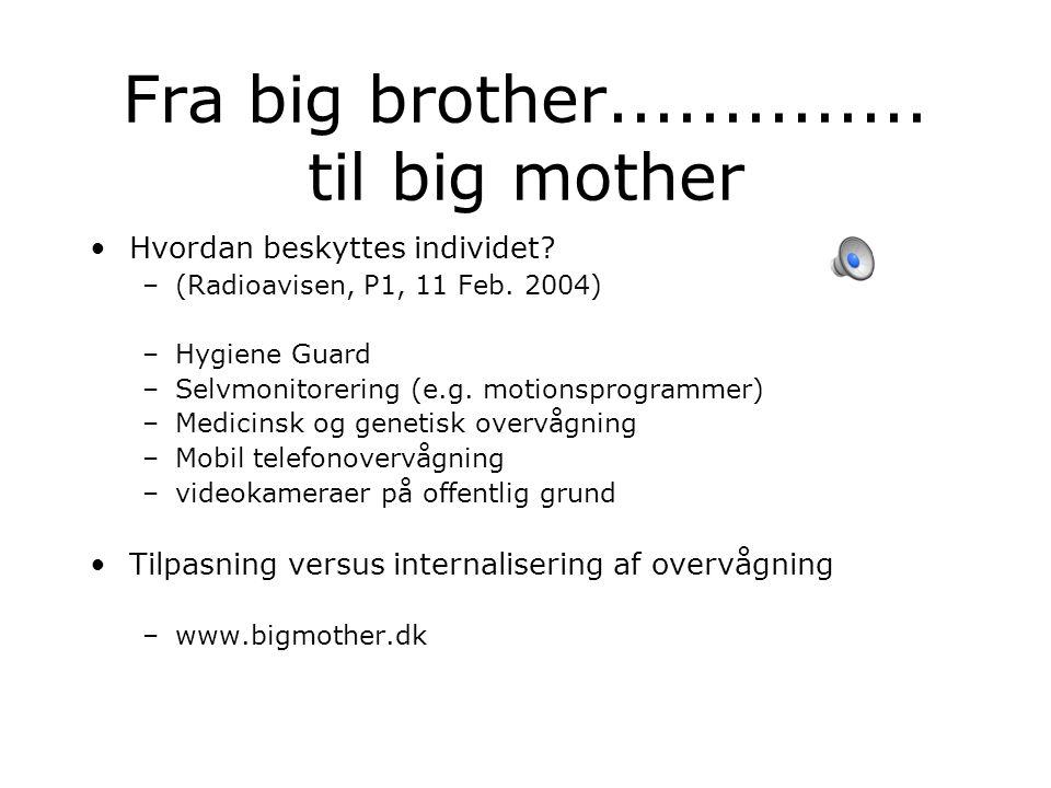 Fra big brother.............. til big mother Hvordan beskyttes individet.