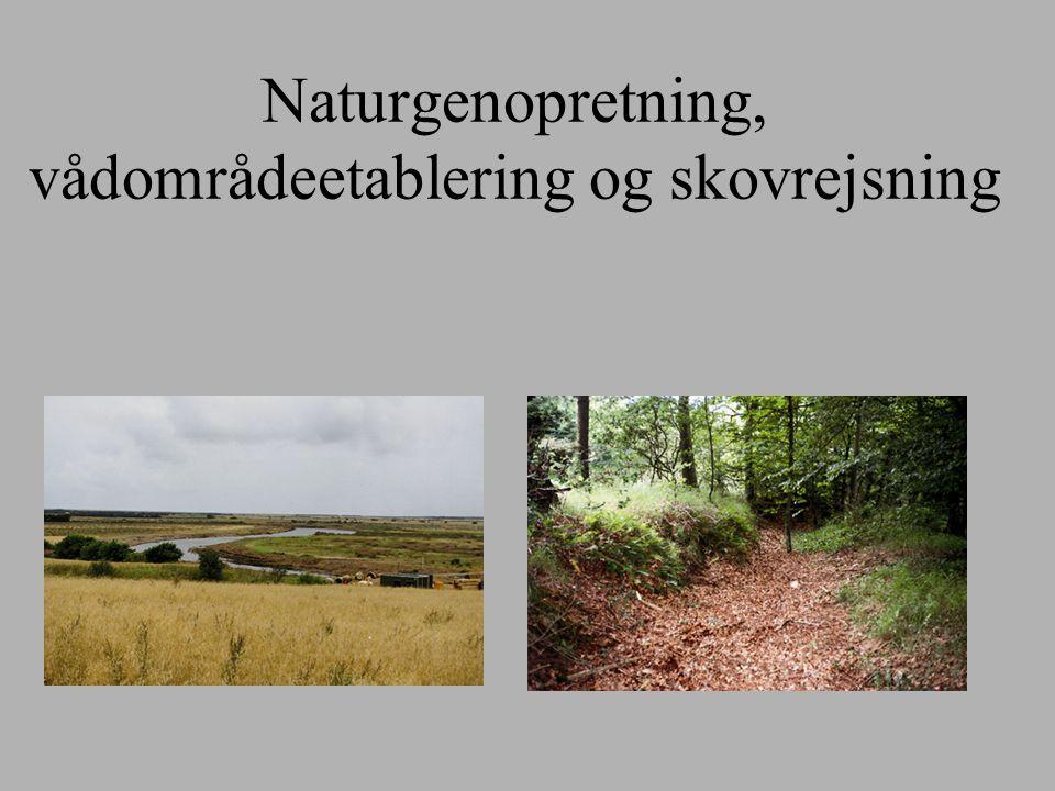 Naturgenopretning, vådområdeetablering og skovrejsning