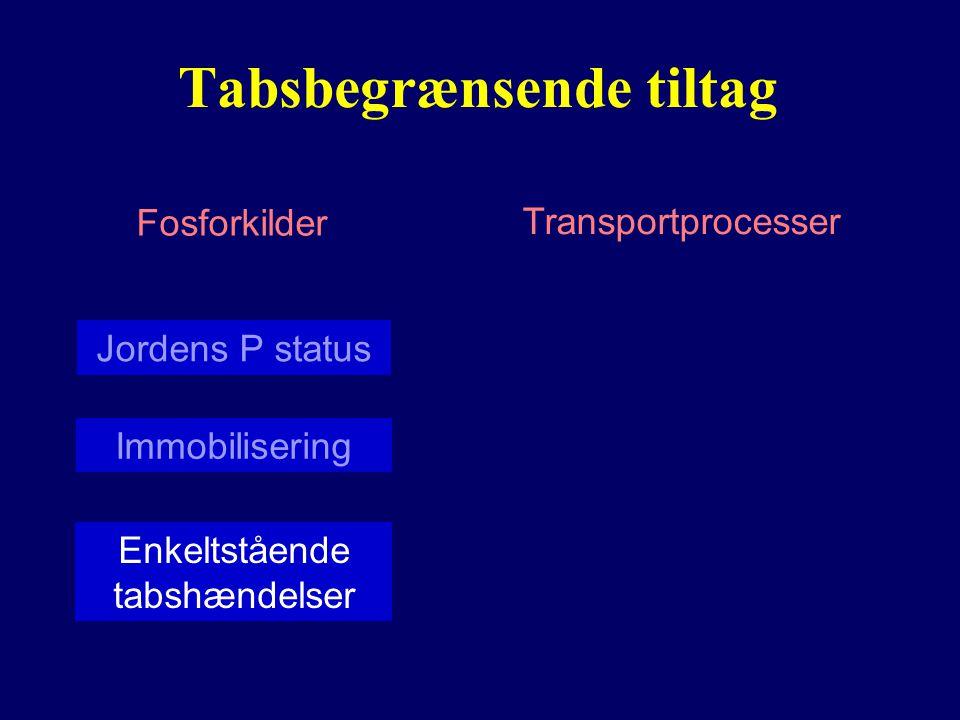 Tabsbegrænsende tiltag Fosforkilder Transportprocesser Jordens P status Enkeltstående tabshændelser Immobilisering