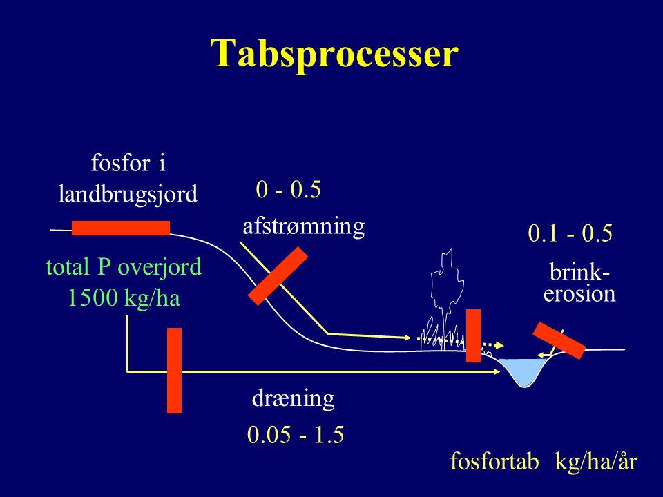 Tabsprocesser dræning afstrømning brink- erosion fosfor i landbrugsjord 0.05 - 1.5 0.1 - 0.5 0 - 0.5 fosfortab kg/ha/år total P overjord 1500 kg/ha
