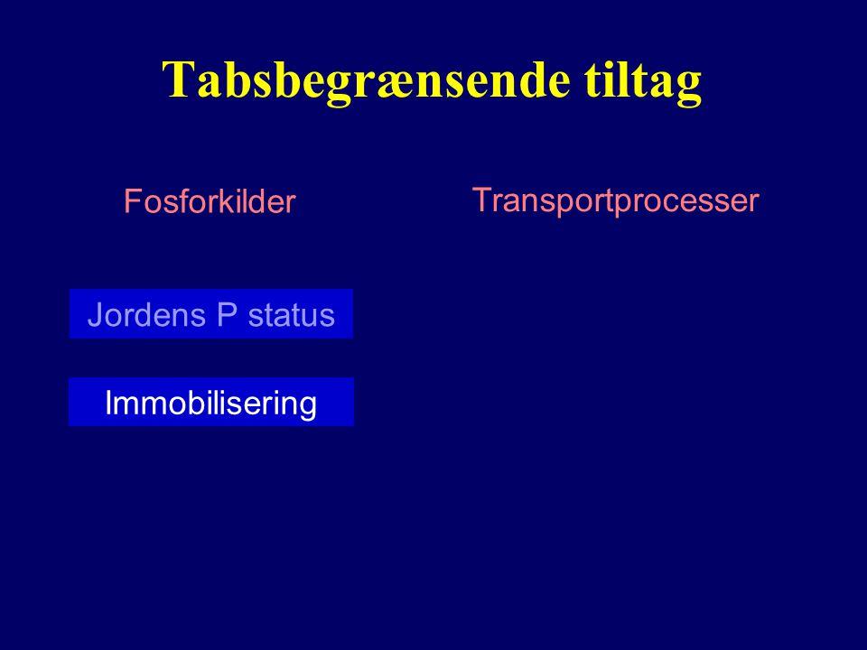 Tabsbegrænsende tiltag Fosforkilder Transportprocesser Jordens P status Immobilisering