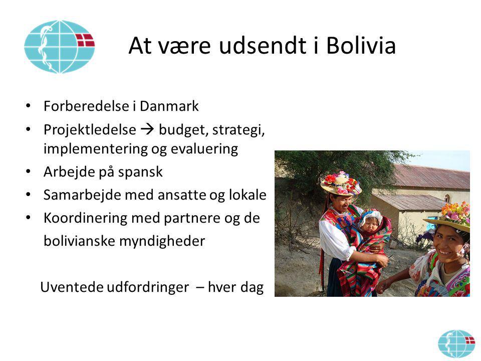 At være udsendt i Bolivia Forberedelse i Danmark Projektledelse  budget, strategi, implementering og evaluering Arbejde på spansk Samarbejde med ansatte og lokale Koordinering med partnere og de bolivianske myndigheder Uventede udfordringer – hver dag