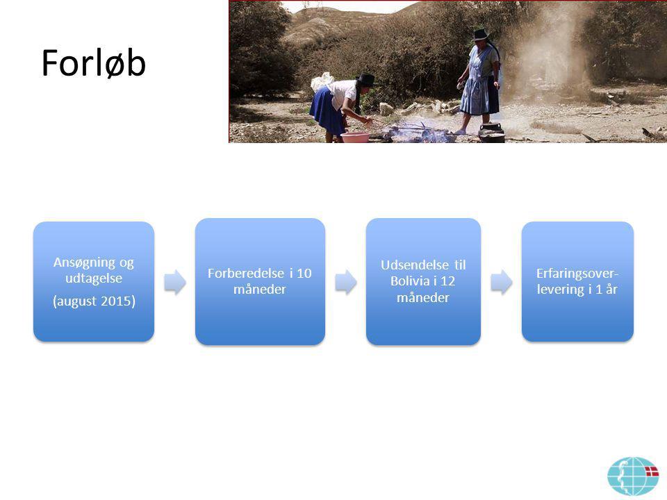 Forløb Ansøgning og udtagelse (august 2015) Forberedelse i 10 måneder Udsendelse til Bolivia i 12 måneder Erfaringsover- levering i 1 år