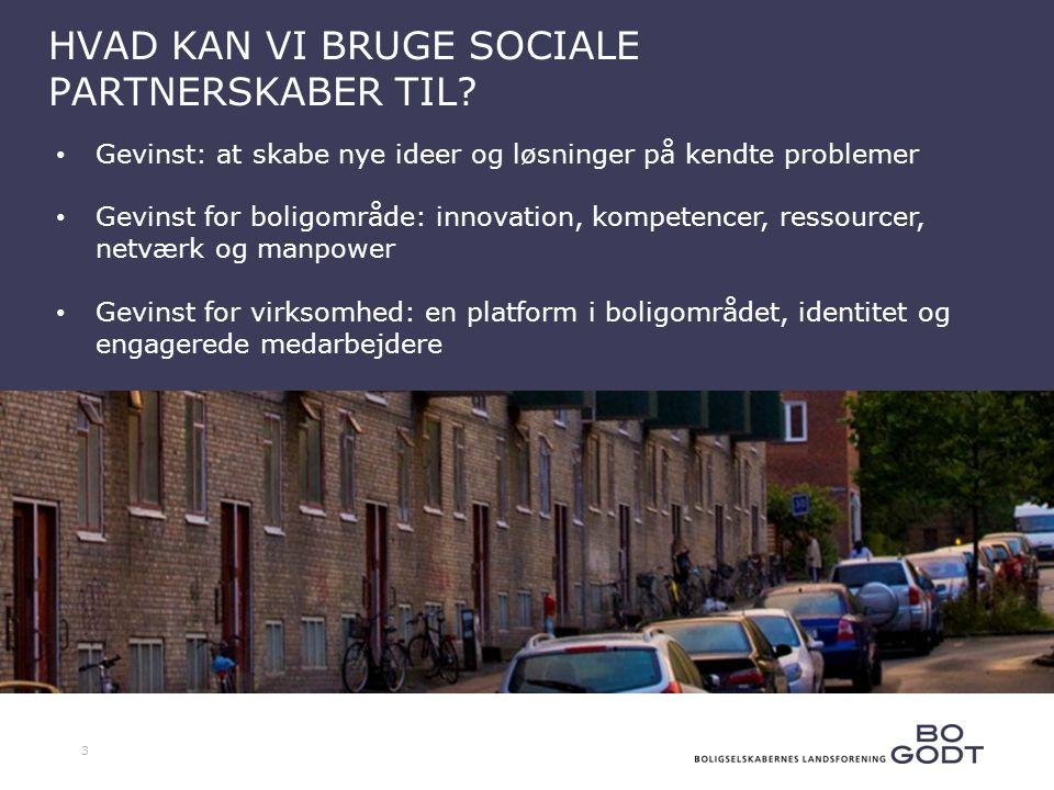 3 HVAD KAN VI BRUGE SOCIALE PARTNERSKABER TIL.