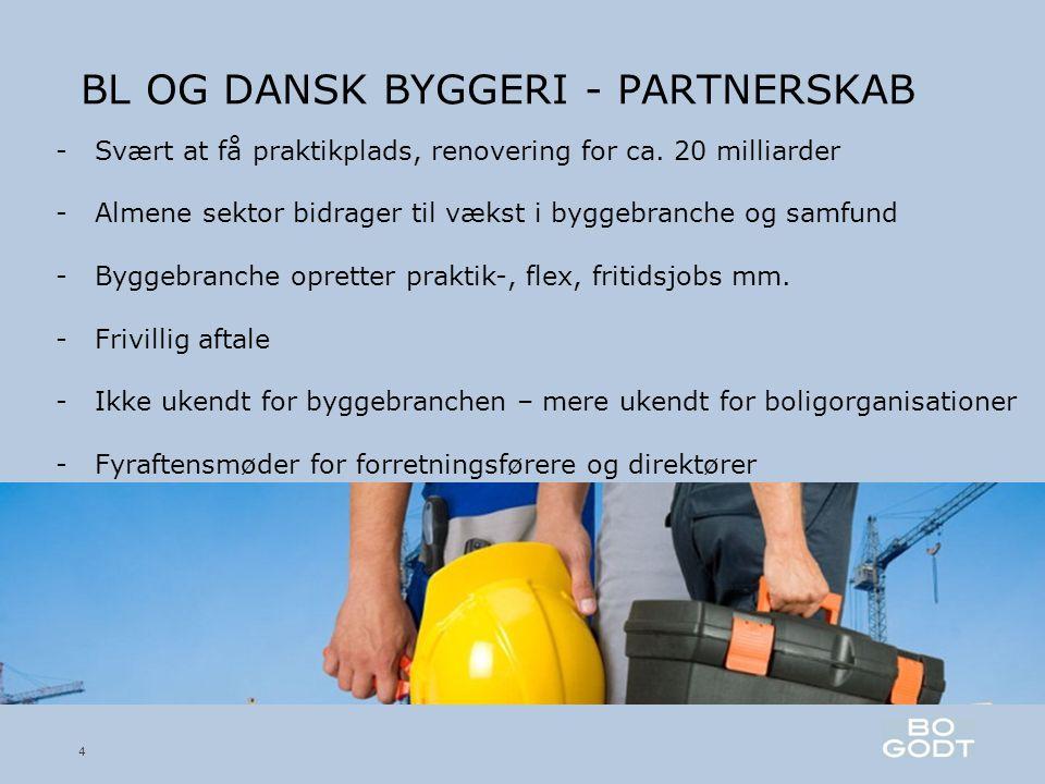 BL OG DANSK BYGGERI - PARTNERSKAB 4 -Svært at få praktikplads, renovering for ca.