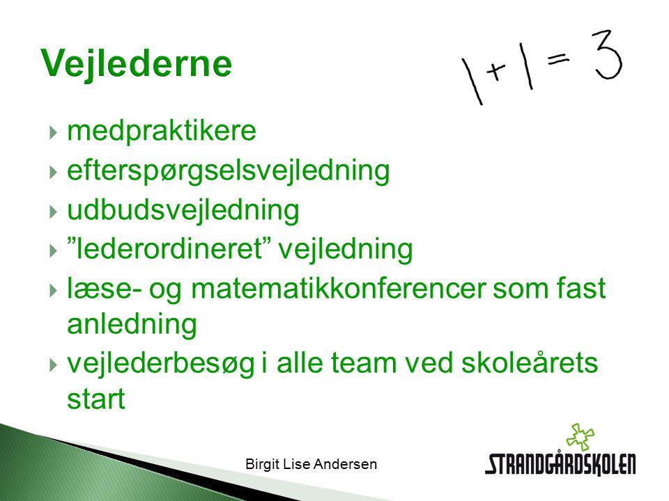 Birgit Lise Andersen  medpraktikere  efterspørgselsvejledning  udbudsvejledning  lederordineret vejledning  læse- og matematikkonferencer som fast anledning  vejlederbesøg i alle team ved skoleårets start