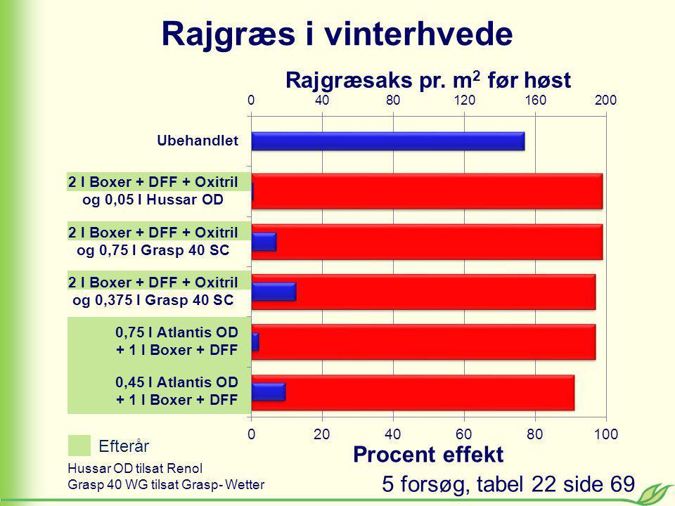 Rajgræs i vinterhvede Hussar OD tilsat Renol Grasp 40 WG tilsat Grasp- Wetter 5 forsøg, tabel 22 side 69